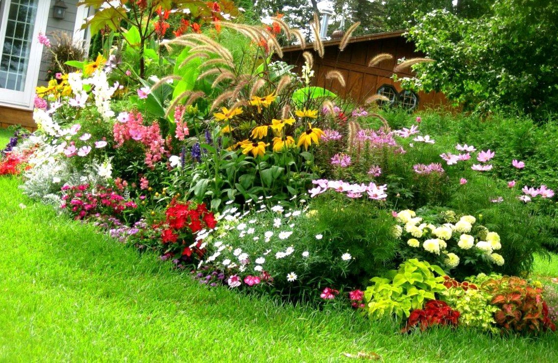 front yard landscaping ideas for south texas surge pack front lawn