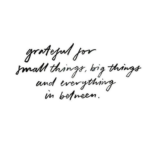 Sometimes we forget to be thankful for all the things in life. From the little  things like having clean water to d… | Thankful quotes, Grateful quotes,  Words quotes