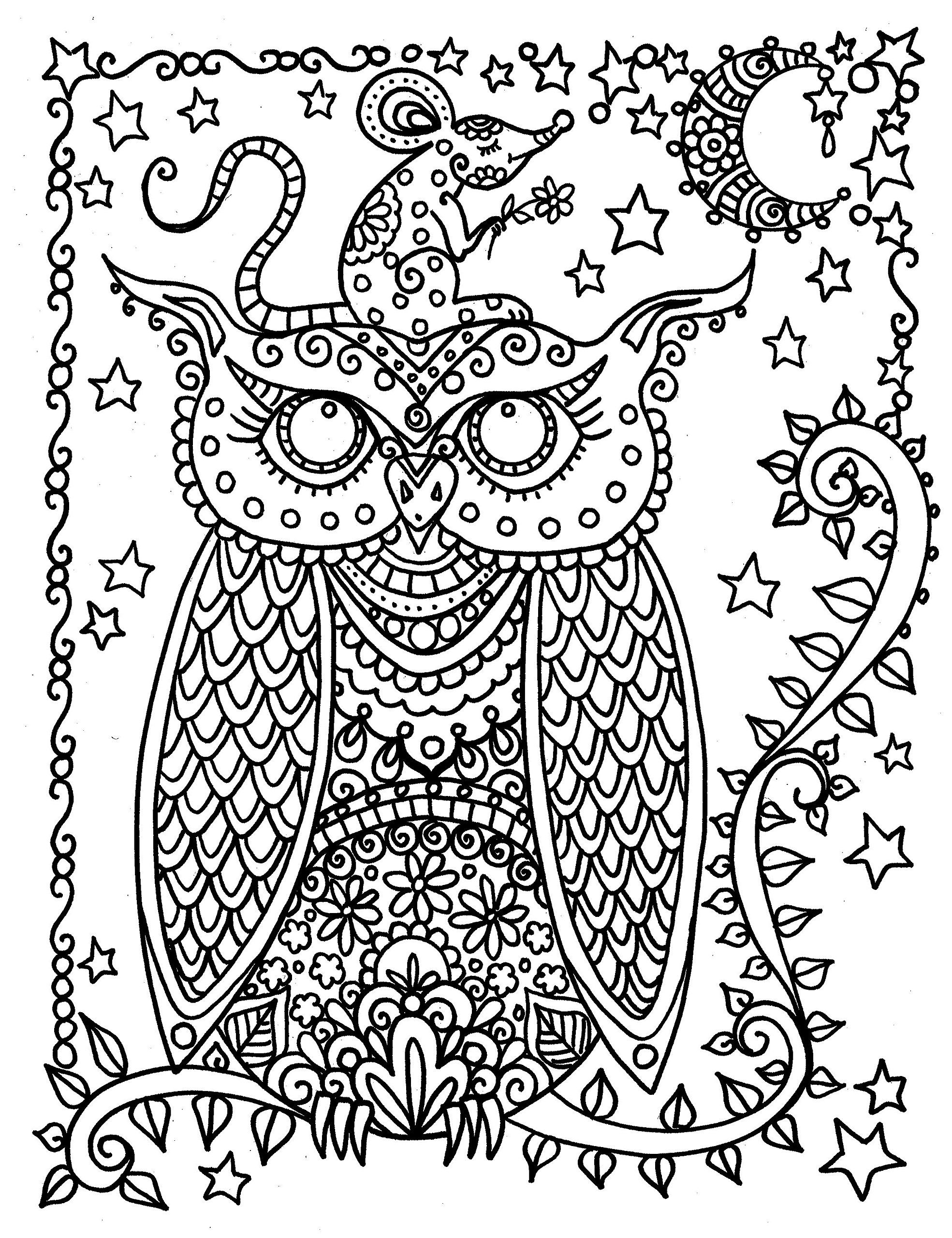 Funky and Fun Owls Coloring Book. Spiral Bound, No Bleed paper ...