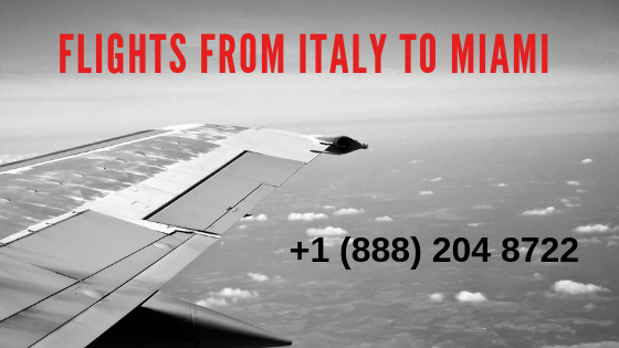 Grab your best deals on flights from Italy to miami dial