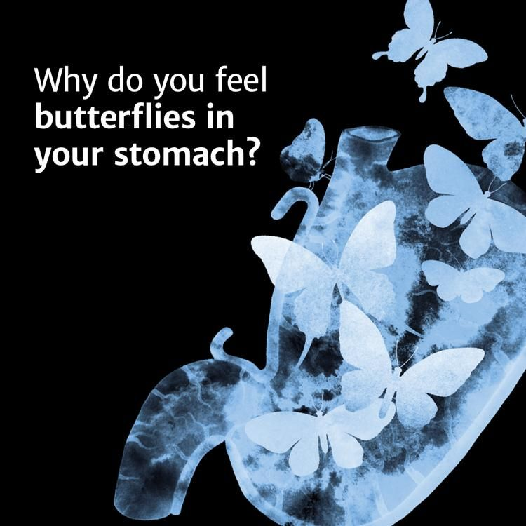 Why Do You Feel Butterflies in Your Stomach? | Funny