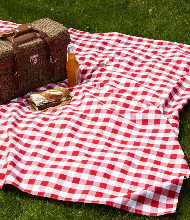 18 Awesome Blankets To Pack For Your Next Picnic Picnic Vintage Picnic Picnic Blanket