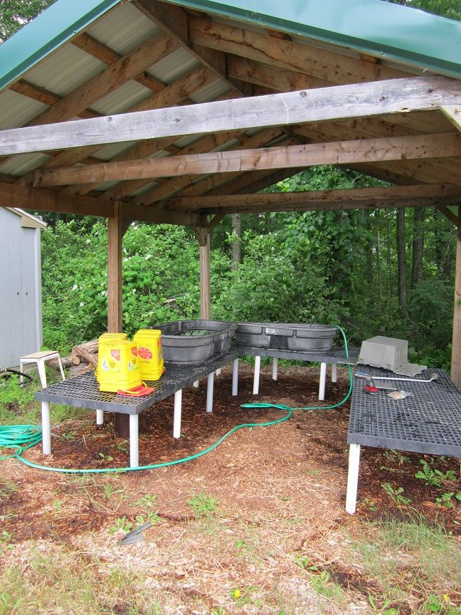 wash station Produce gardening, Farm gardens, Vegetable