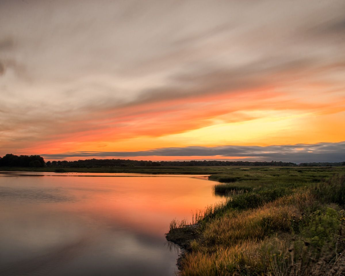 Landscape Photograph Sunset Over Woodland Marsh Prints And