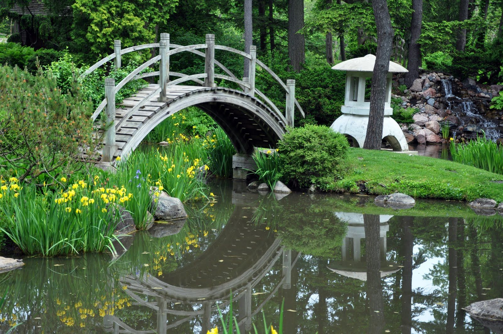 japanese garden bridge construction rick beato photo june 2010 - Japanese Garden Cherry Blossom Bridge