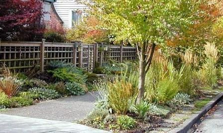 Pin By Shabby Pink Bungalow On Outdoor Spaces Water Wise Landscaping Sidewalk Landscaping Low Maintenance Landscaping Front Yard