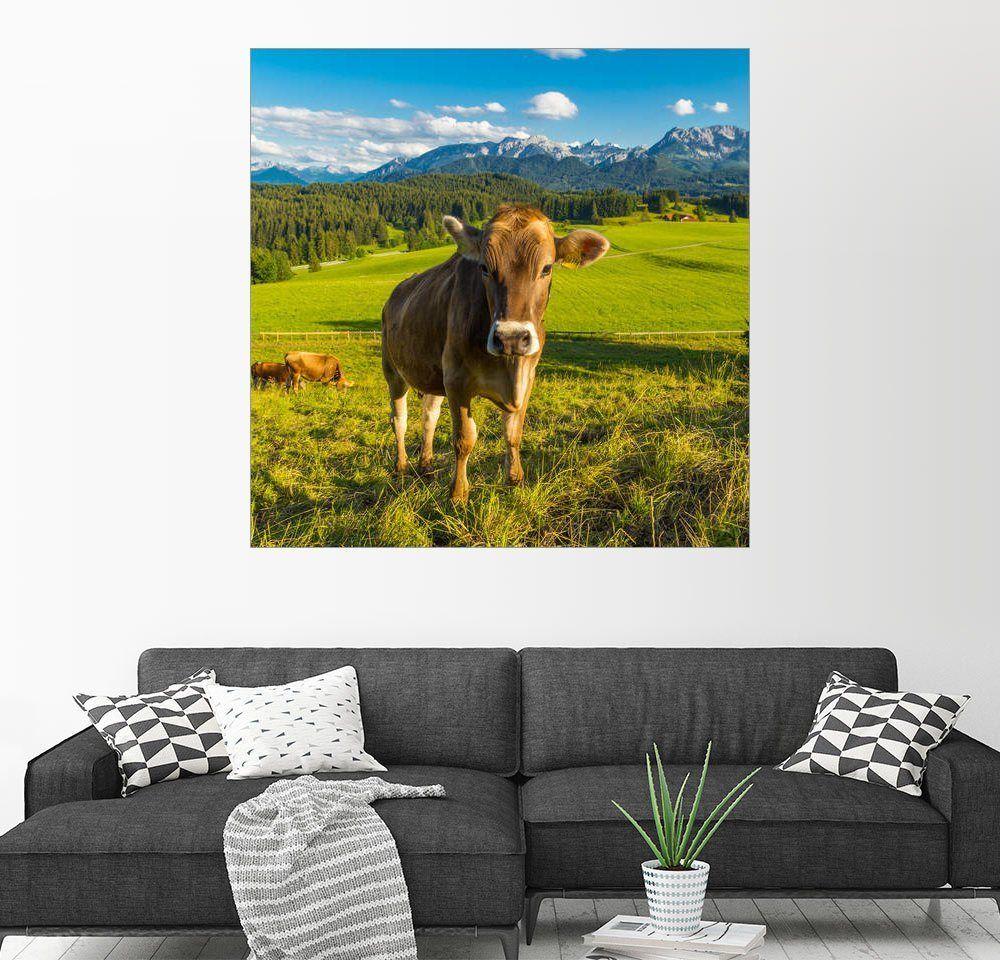 Posterlounge Wandbild - Michael Helmer »Lustige Kuh in den Alpen ...