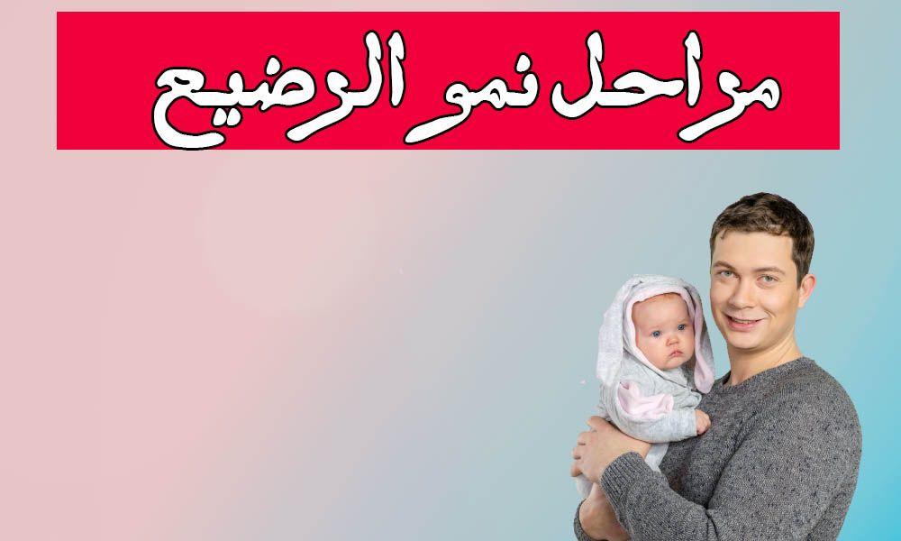 نمو الرضيع في أقل من 4 أشهر هناك عد ة مراحل لنمو الطفل الرضيع خلال الشهور الأولى في العام الأول حيث ينمو الطفل خلال الربع الأو Bean Bag Chair Furniture Chair