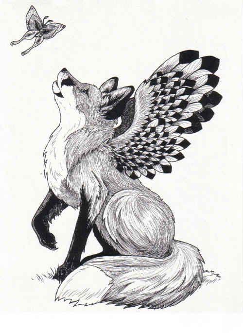 fox butterfly