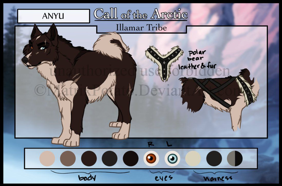 All the Ikkuma Dogs! I'll tag tomorrow =] Dog art