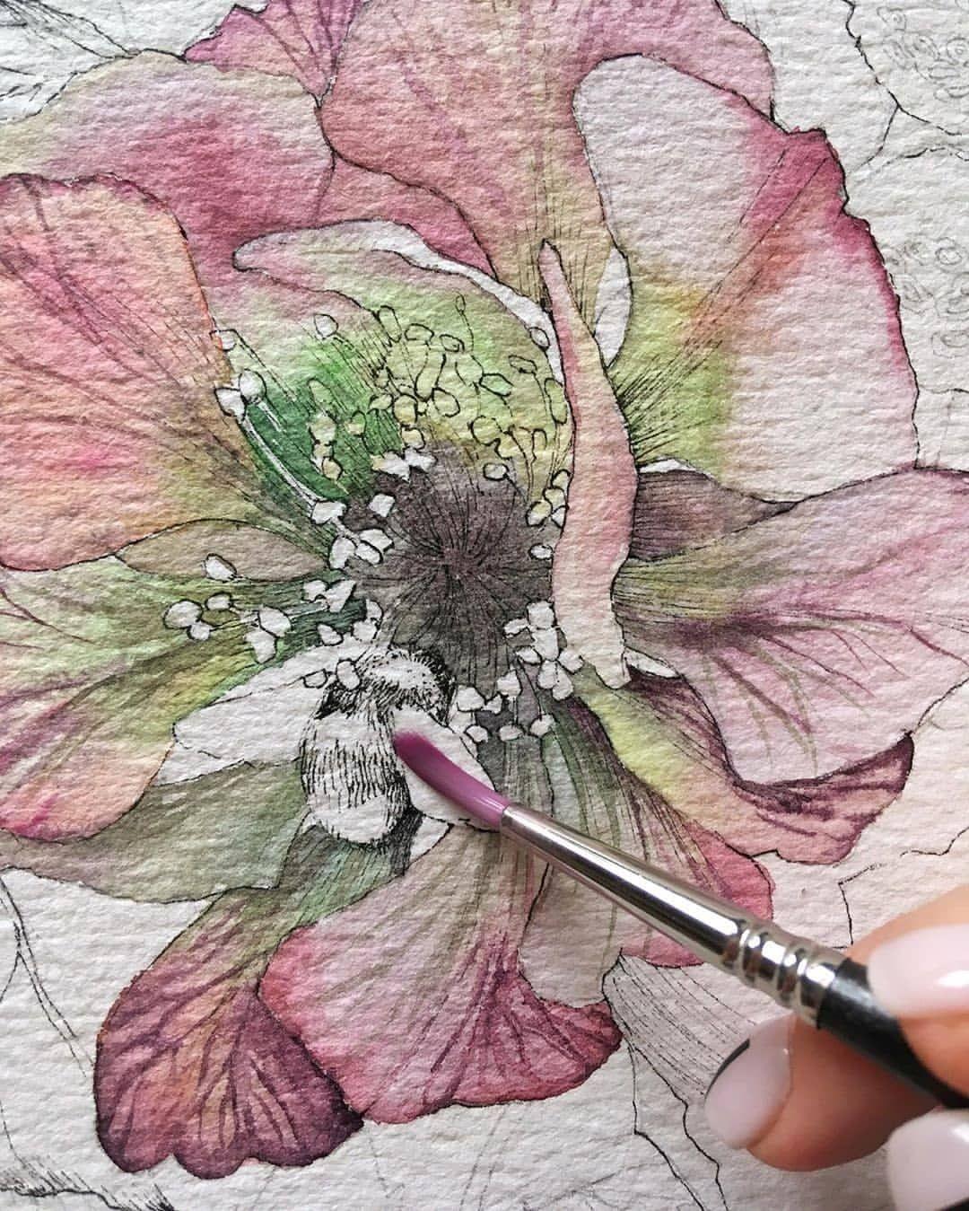 Instagram En 2019 Peinture A L Aquarelle Peinture Aquarelle Et