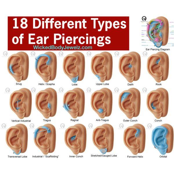 18 Different Types of Ear Piercings by wickedbodyjewelz on ... Ear Piercings Types