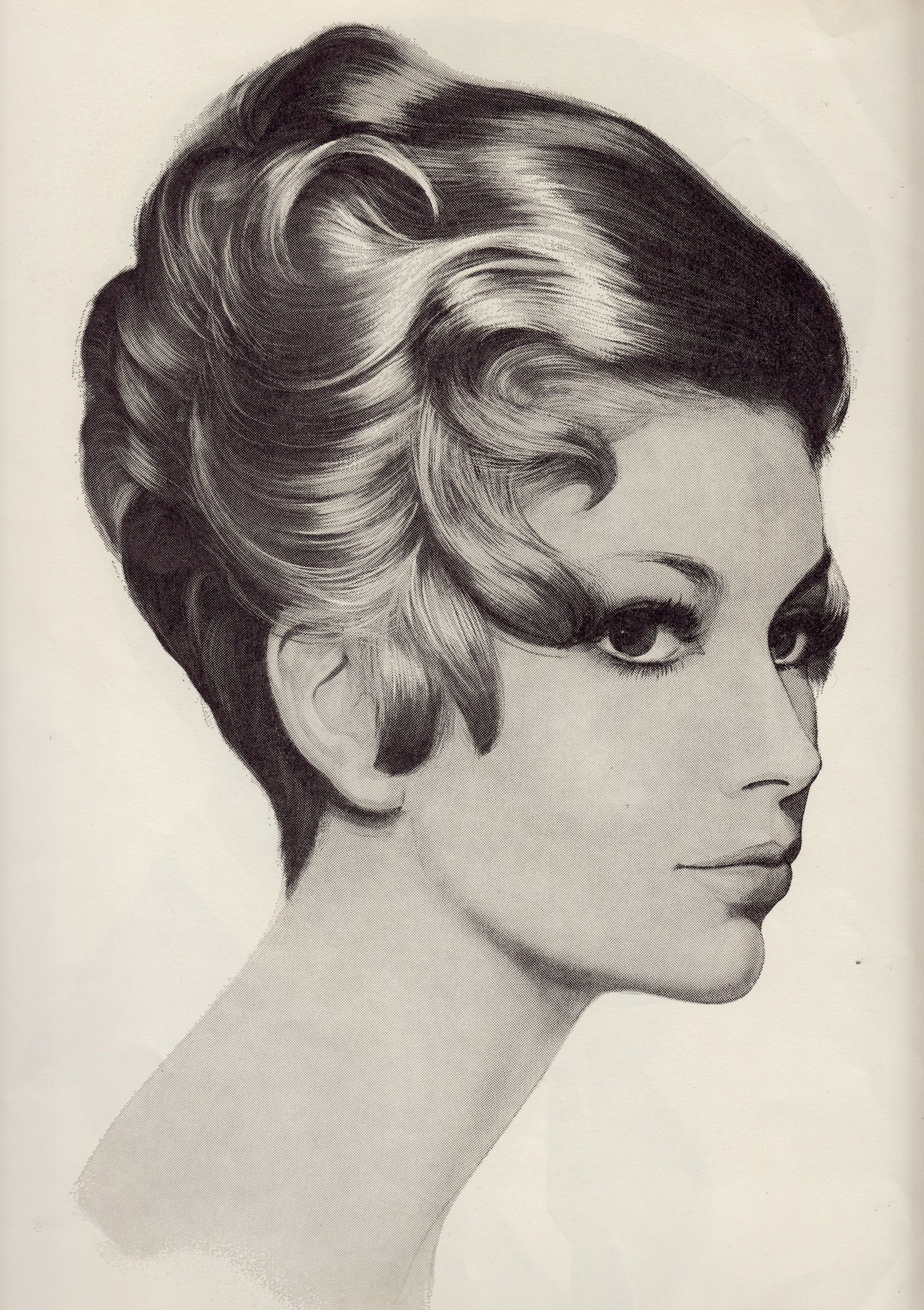 Hairdo Illustration 25th April 1967 From Europe Haute Coiffure DFZ