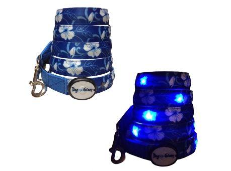 Designer LED collars & LED Leashes on sale w/ free shipping @Coupaw