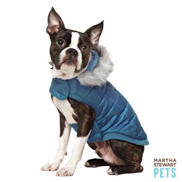 Petsmart Com Dog Sale Martha Stewart Pets Blue Puffer Coat Boston Terrier Pets Pet Accessories
