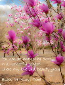 35 Happy Birthday Mom Quotes Birthday Wishes For Mom Part 7 Beautiful Flowers Flower Garden Japanese Magnolia