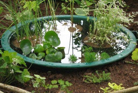 Comment Creer Un Mini Bassin Petit Bassin De Jardin Bassin De