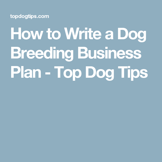 How to Start a Business Breeding Dogs