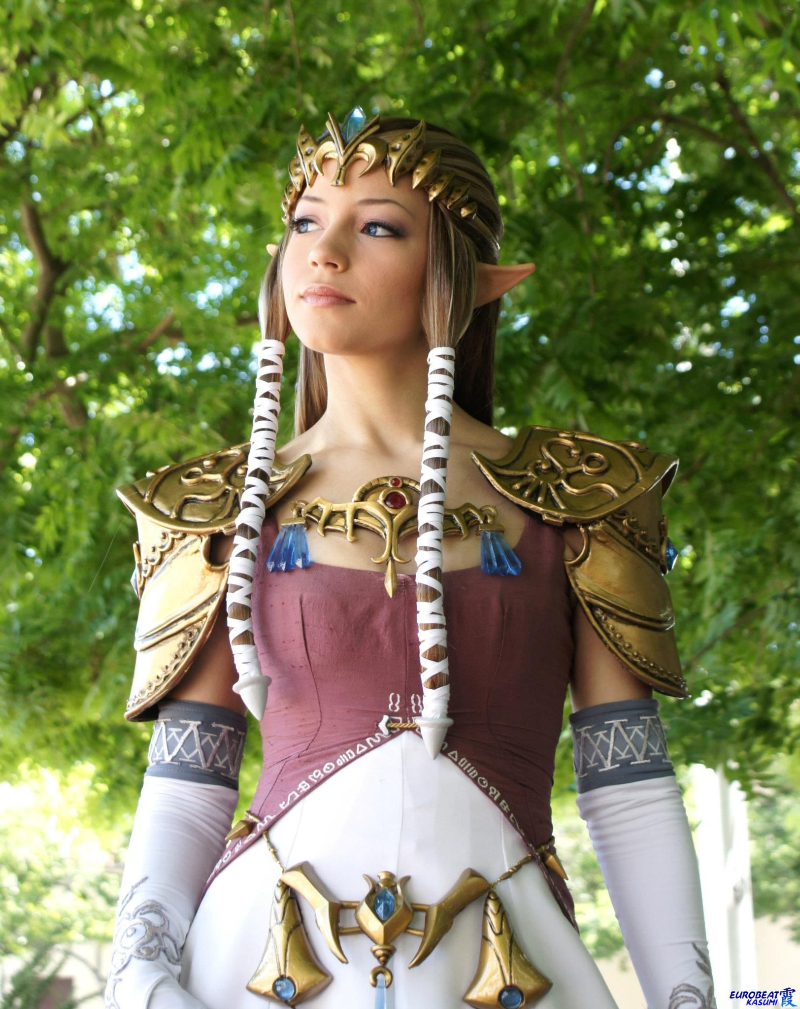 Pin by Ryan Of 9 on Cosplay (Video Game Vixens) Zelda