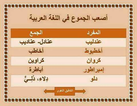 أصعب الجموع في اللغة العربية Learning Arabic Learn Arabic Language Arabic Langauge