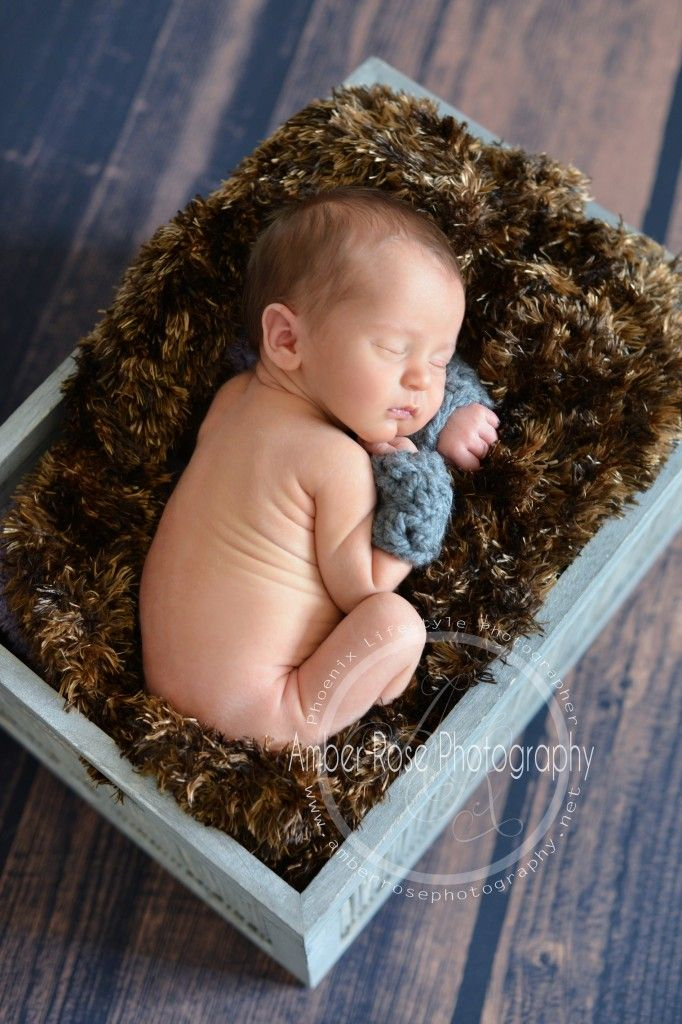 Phoenix newborn photographer laveen newborn photographer amber rose photography amber rose photography