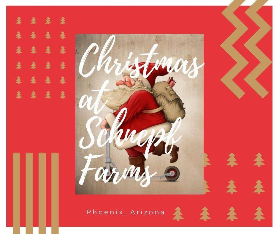 Christmas Activities In Arizona 2020 Christmas at Schnepf Farms Arizona Coupons | Green Vacation Deals