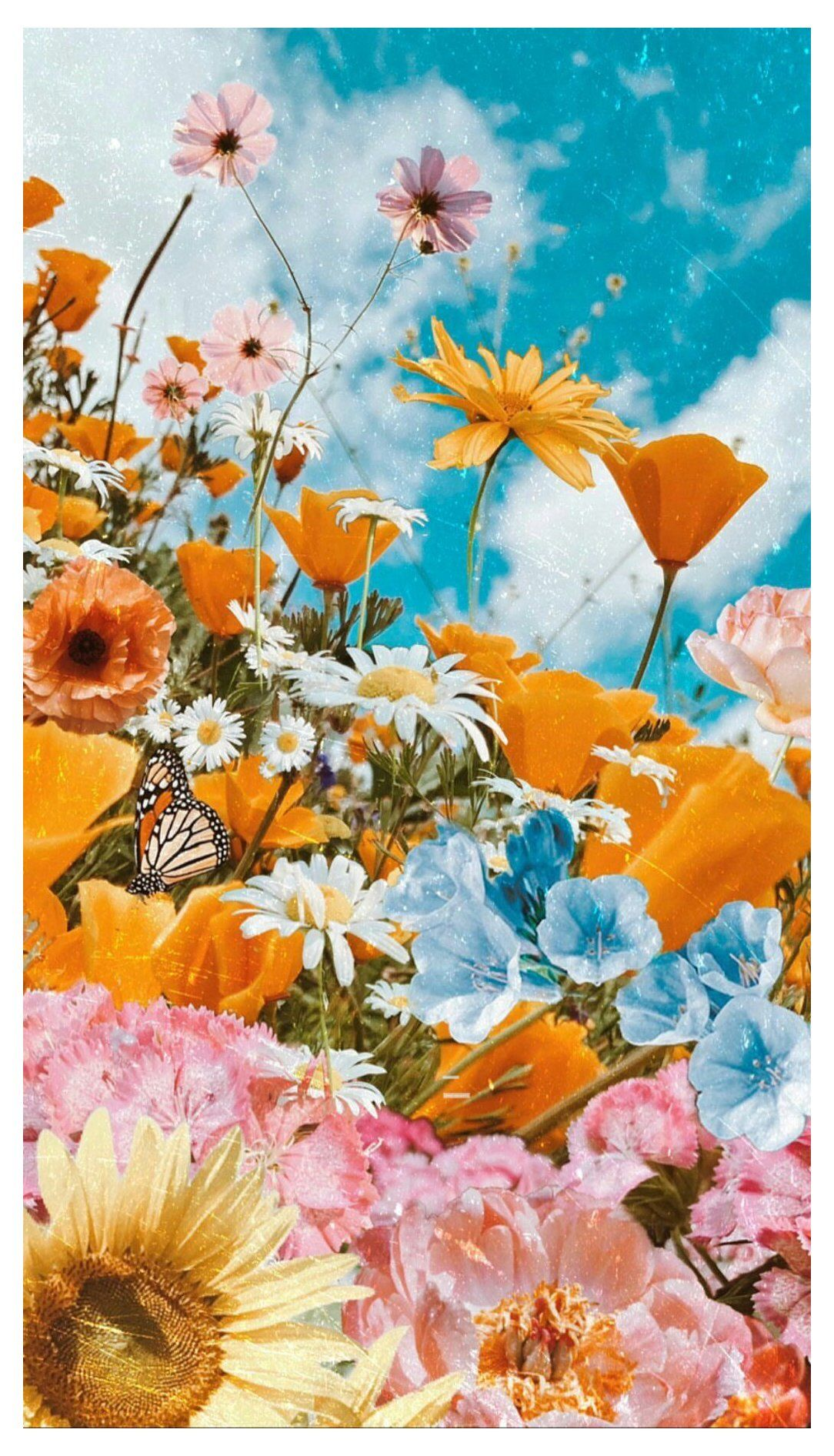 beautiful flowers wallpaper backgrounds nature