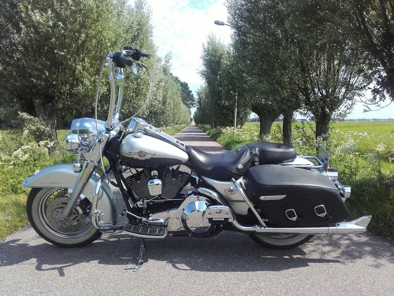 2003 Harley Davidson Road King Carlini Design Gangster Ape