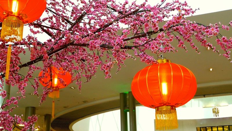 Cherry blossoms and lanterns...Chinese New Year ...