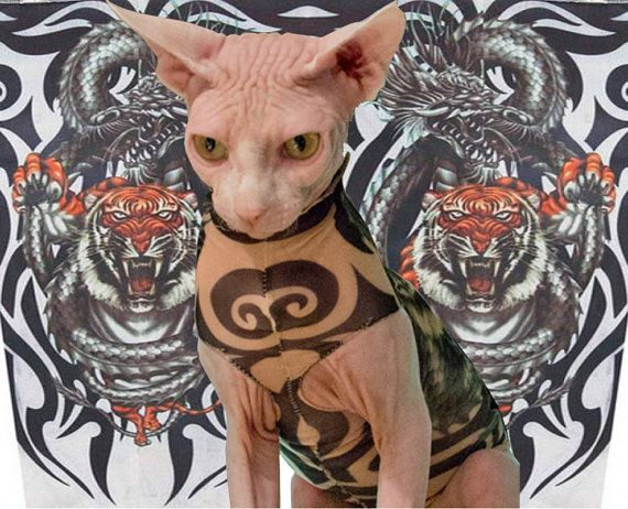 Tiger And Dragon Tattoo Inspired Sphynx Cat Clothes A Lightweight Illusion Outfit For Your Hairless Cat Hairless Cat Pet Costumes Sphynx Cat