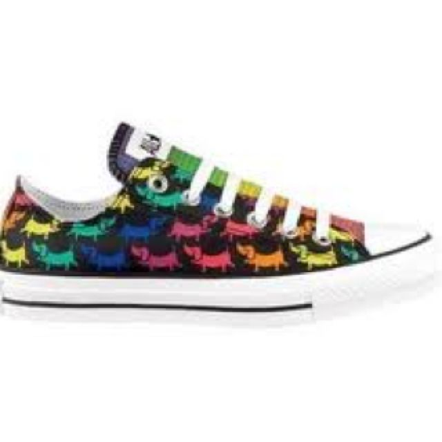 fetching how to design converse shoes at home. Rainbow Dachshund Converse  D Shoes Pinterest Dachshunds and
