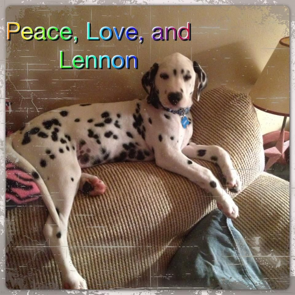 Peace love and Lennon