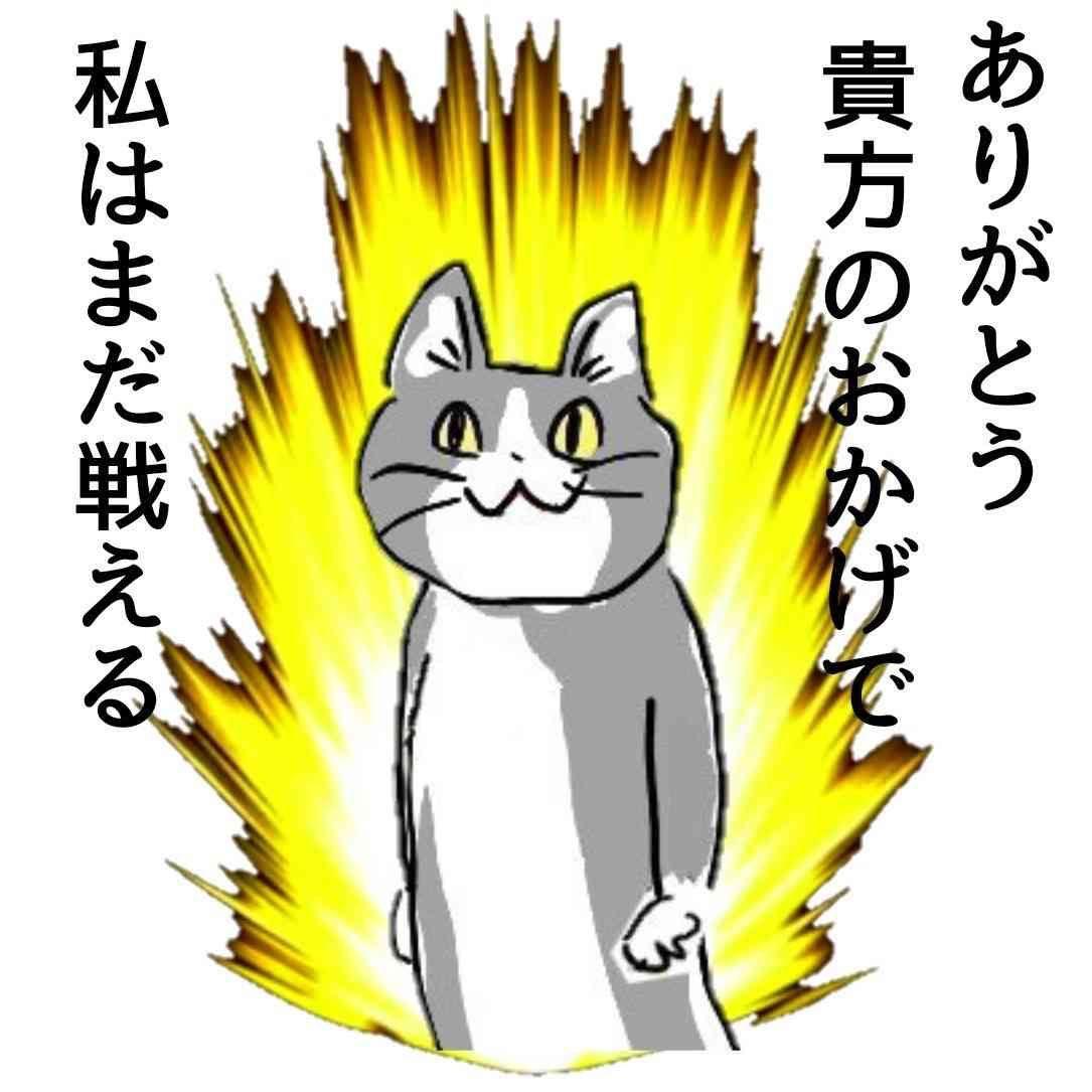 お気に入りの現場猫を貼ろう ガールズちゃんねる girls channel 2021 スタンプ 画像 おもしろ猫のミーム 猫のイラスト