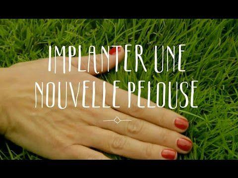 Comment Planter Du Gazon Jardineries Truffaut Tv