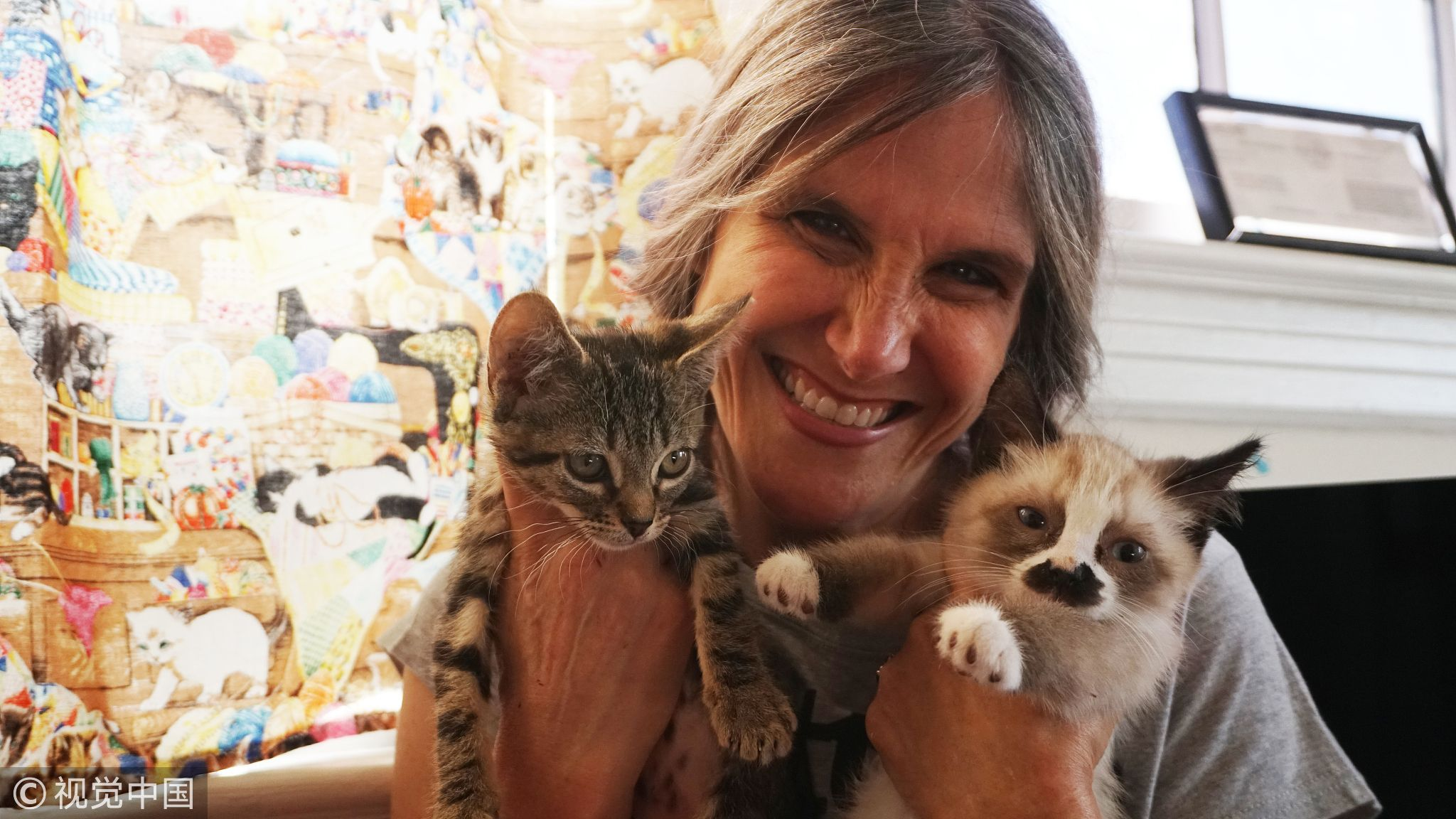 No More Feral Cats Inside Charm School A School For Kittens Are Rescuing And Socializing Stray Cats So That They Can Be Adopted Feral Cats Cats Animal Stories