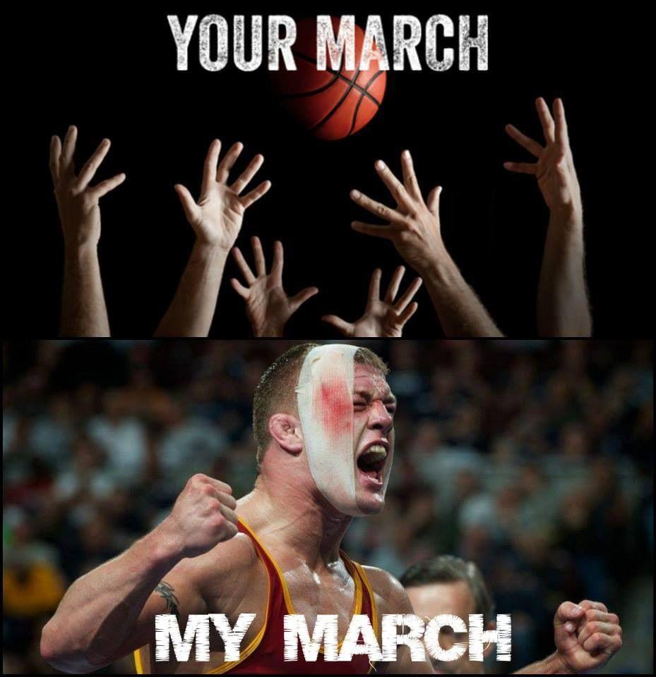 Dumb Wrestling Meme