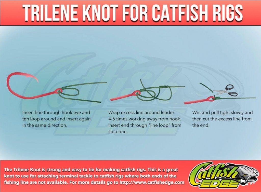 Four Fishing Knots Every Catfish Angler Should Know Catfish Rigs Fishing Knots Catfish
