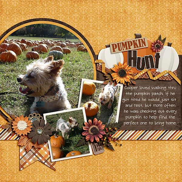 Pumpkin+Hunt - Scrapbook.com