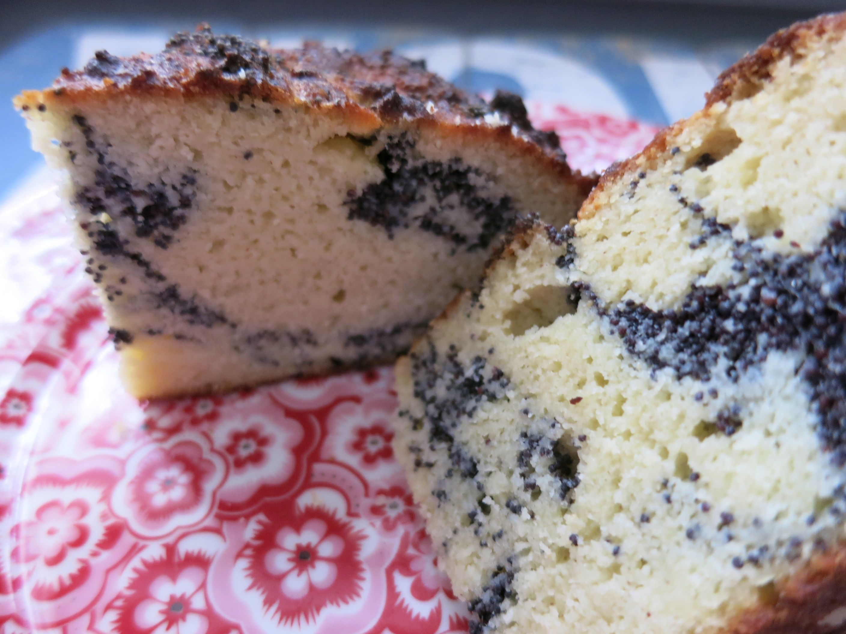 Low Carb Kuchen Ohne Ei Mohnstrudel Kuchen Rezept Weight Watchers And Low Carb