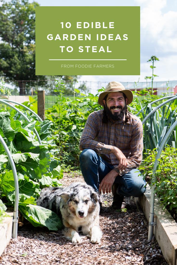 Advice for beginner gardeners on starting an organic edible garden in your backy…