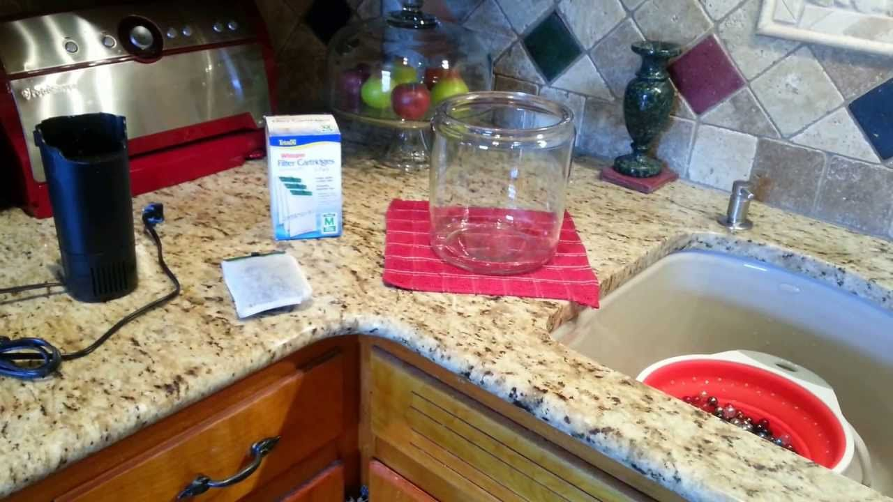 How to Make an Inexpensive Pet Water Fountain
