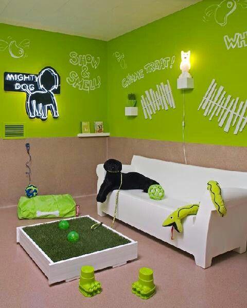 Dog bedroom i love pets pinterest bedrooms dogs for Dog themed bedroom ideas
