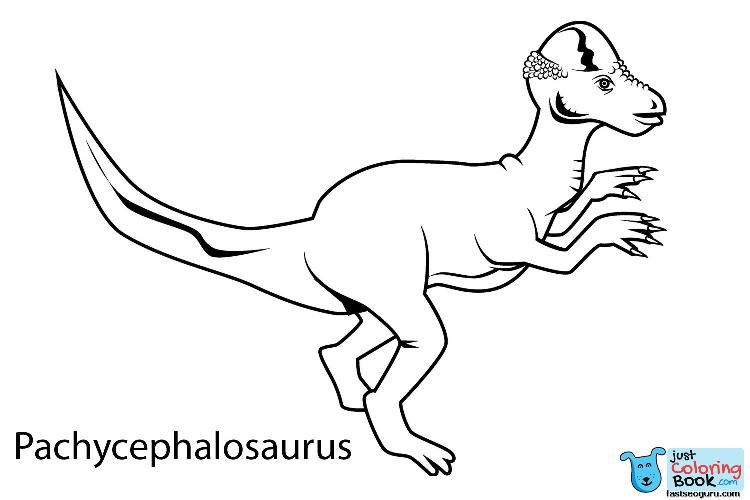 Printable Dinosaur Pachycephalosaurus Coloring In Sheets Ty Within