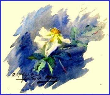Medium Blanche Odin 75 Jpg Aquarelle Fleurs Peinture Aquarelle
