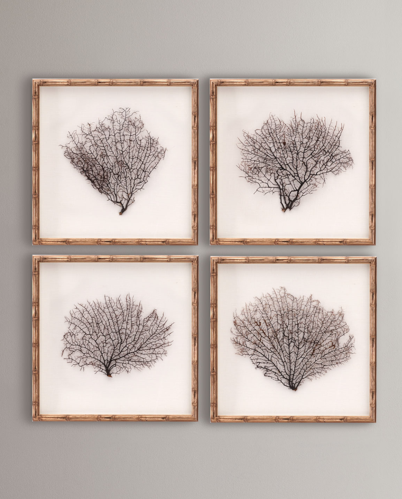 Bamboo Framed Sea Fans Mounted On Linen 4 Piece Set Frame Wall Decor Frames On Wall Wall Decor Set