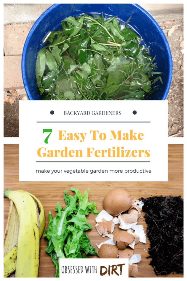 5 Of The World S Best Homemade Vegetable Garden Fertilizers