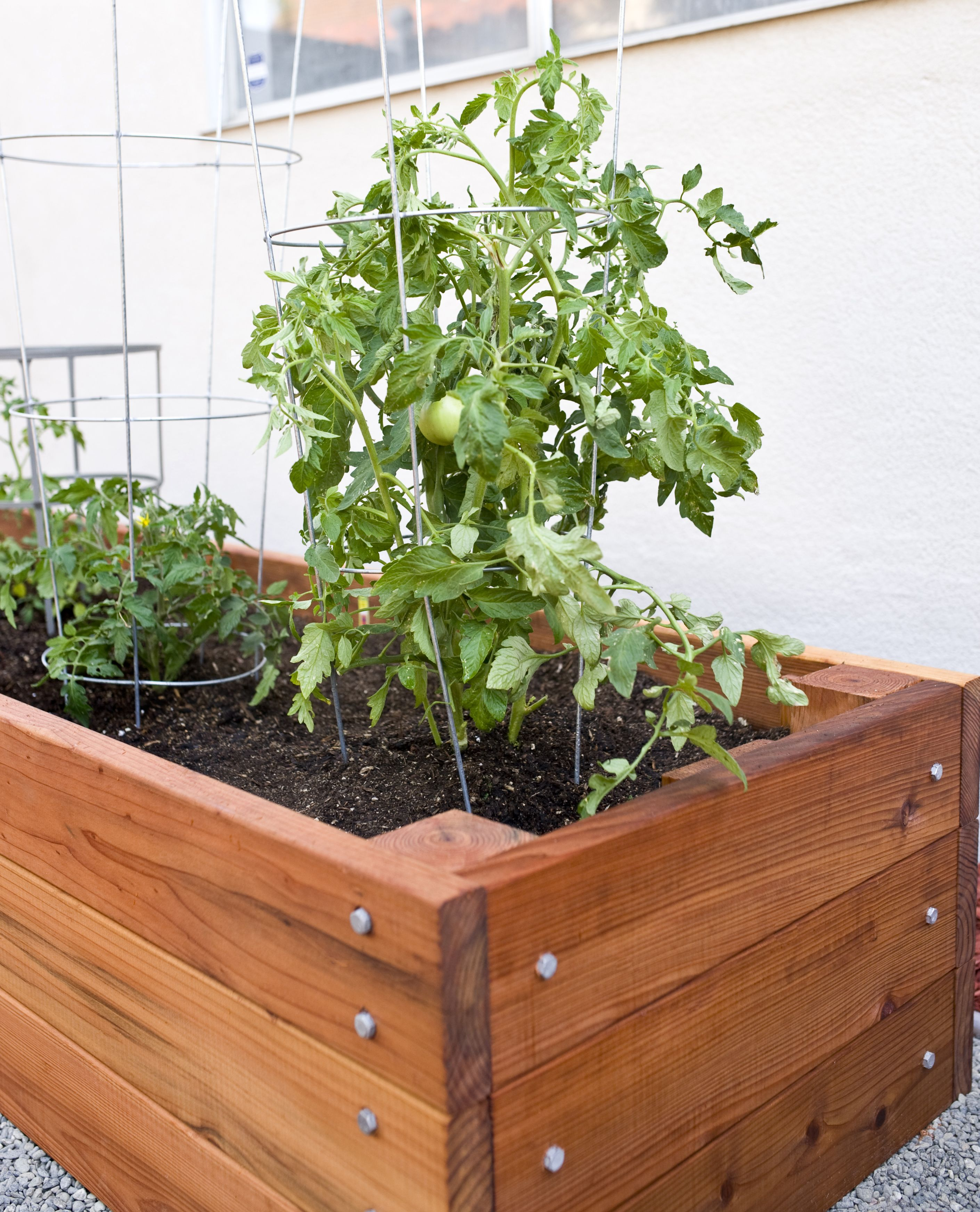 Diy Deck Flower Boxes Large Redwood Planter Box For Tomatoes Diy Projects