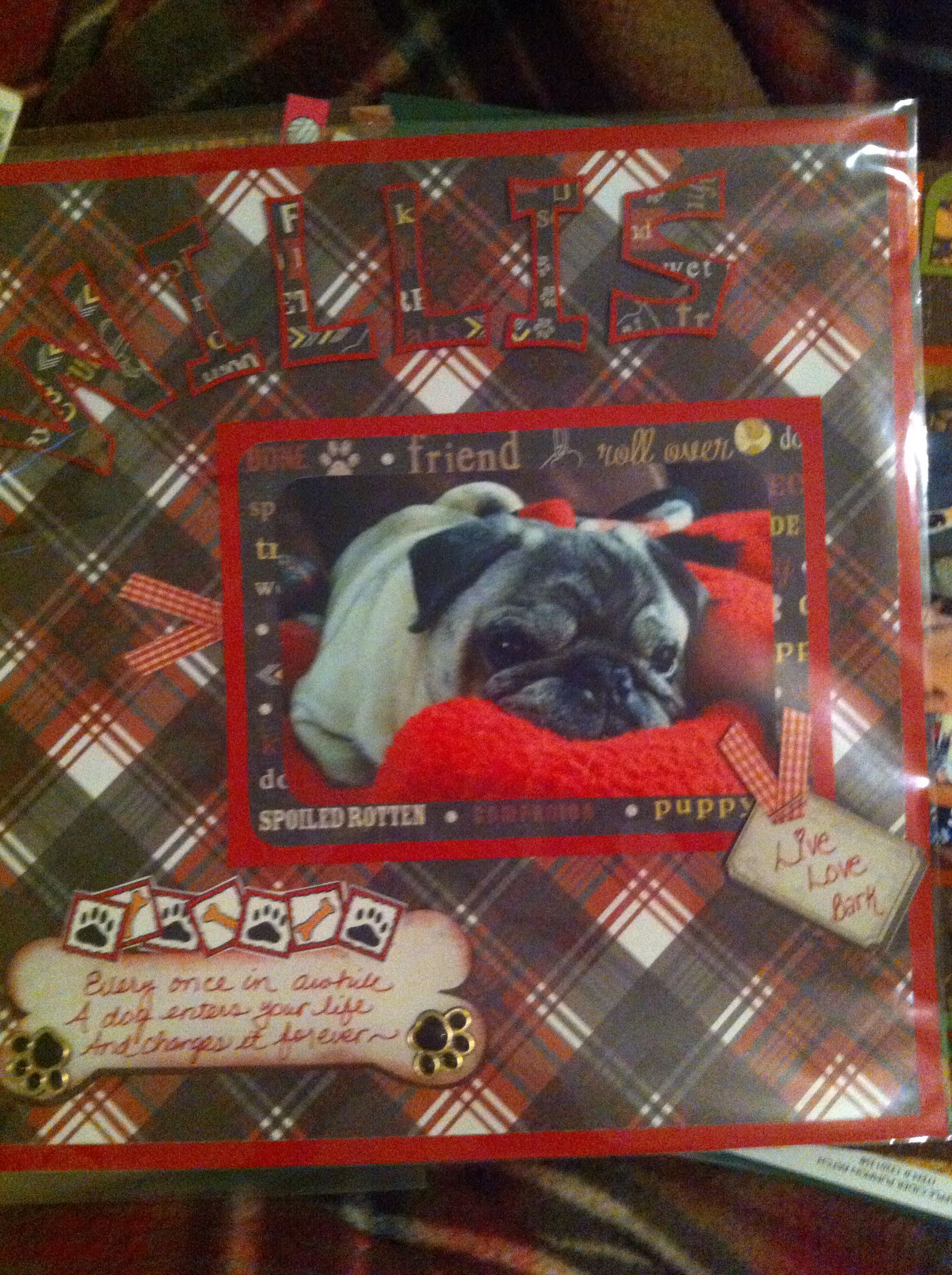 Pin by Stacey CavallinHedin on A layouts mine Doggy
