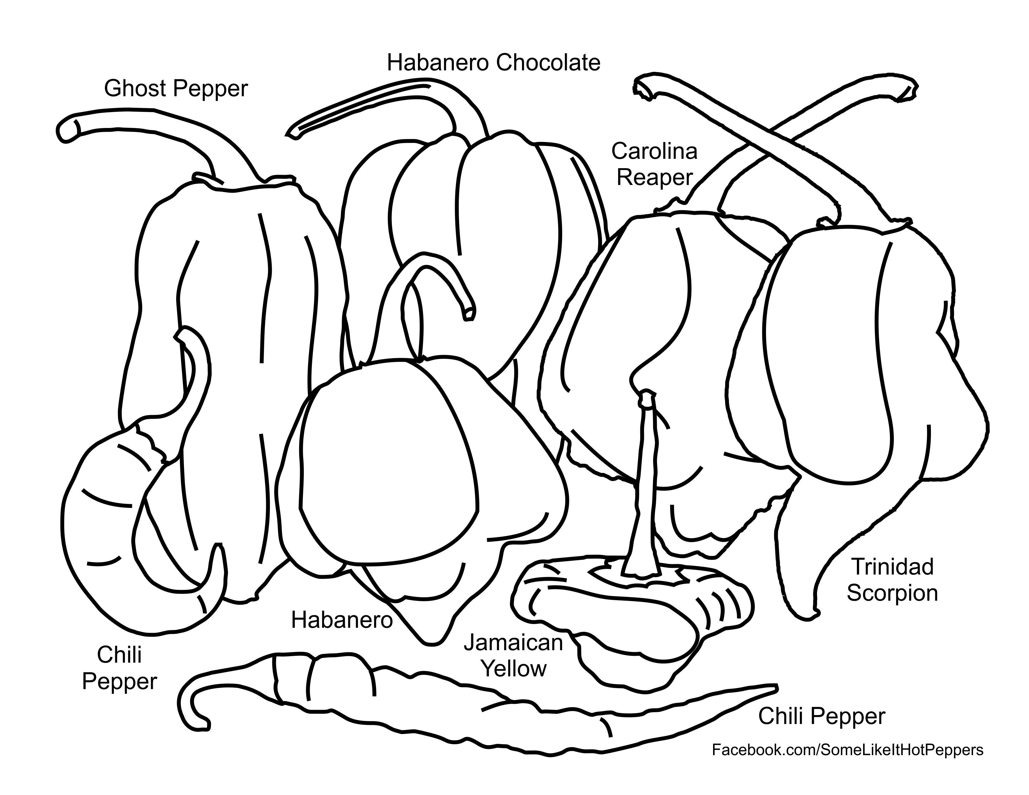 Hot Pepper Coloring Page