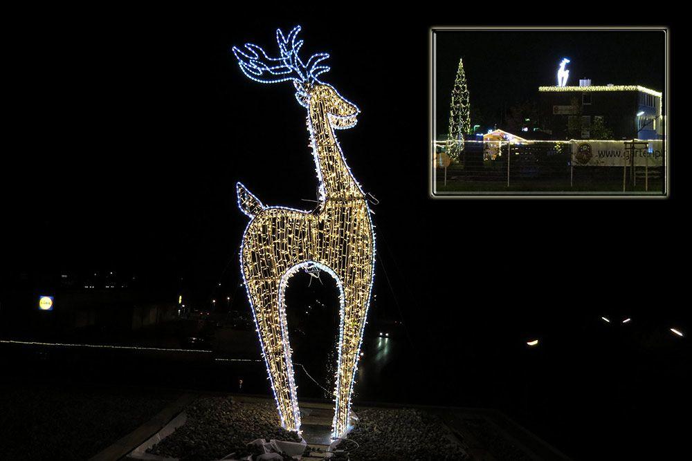 Led Weihnachtsbeleuchtung Rentier.Riesiges Rentier Beleuchtet Ca 370 Cm Hoch Mit Led Als